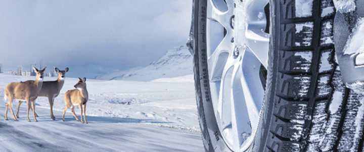 Passenger-Car-Winter-Tyres